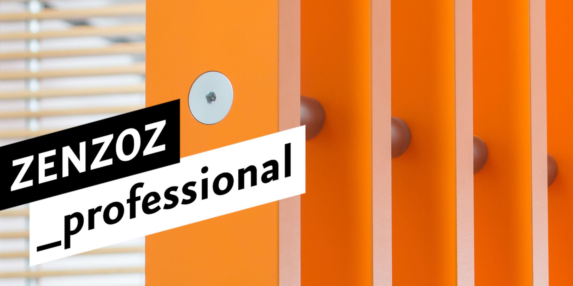ZENZOZ_Themen_Teaser_professional_1